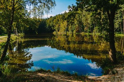 Arboretum Bramy Morawskiej Racibórz