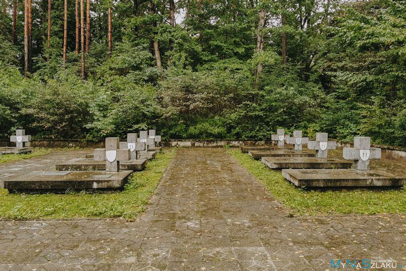 Porytowe Wzgórze Lasy Janowskie atrakcje