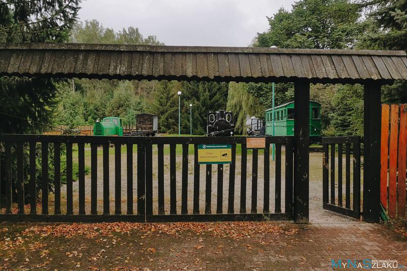 kolej Wąskotorowa w Lasach Janowskich
