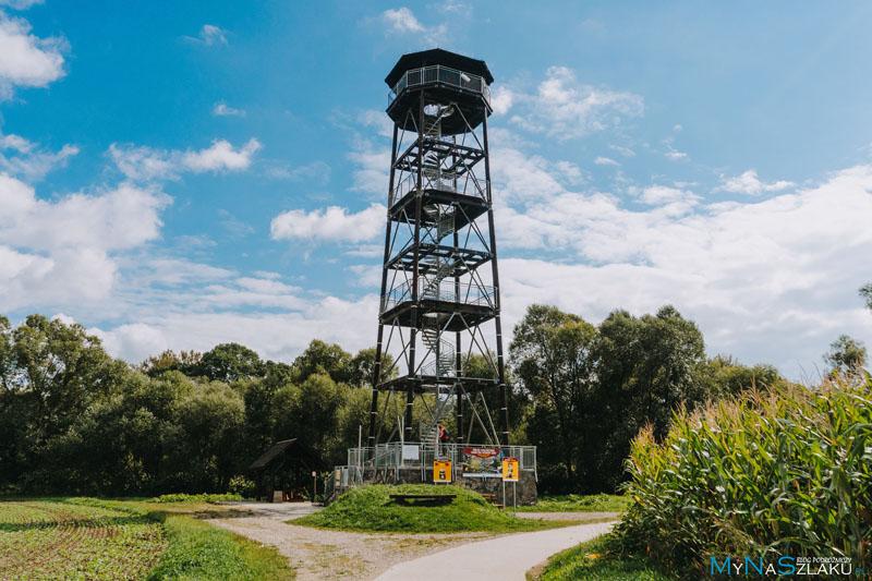 Wieża widokowa na granicznych meandrach rzeki Odry