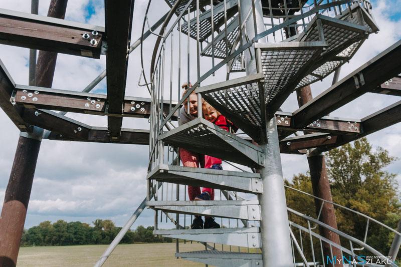 Wieża widokowa (Rozhlenda) na meandrach rzeki Odry